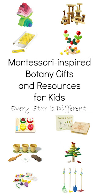 Montessori-inspired Botany Gifts and Resources for Kids