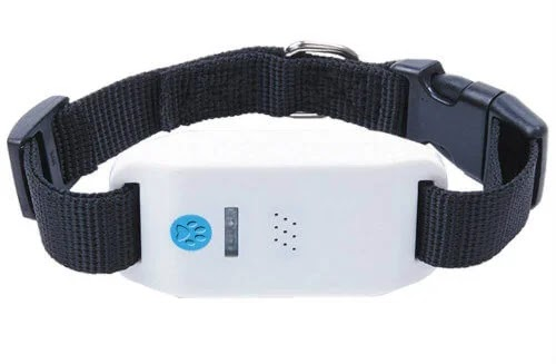 best gps pet tracker for dogs