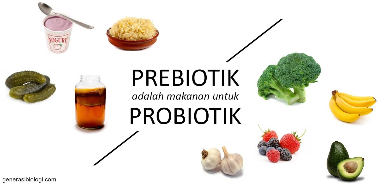 Empat sumber makanan yang kaya akan probiotik yang menyehatan pencernakan.