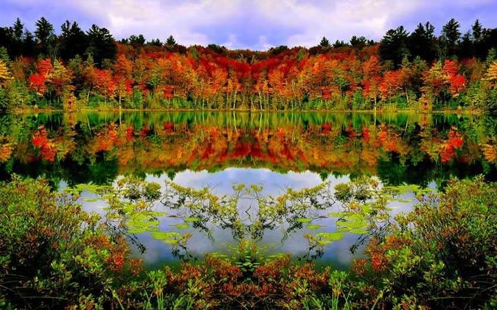 renkli sonbahar resimleri