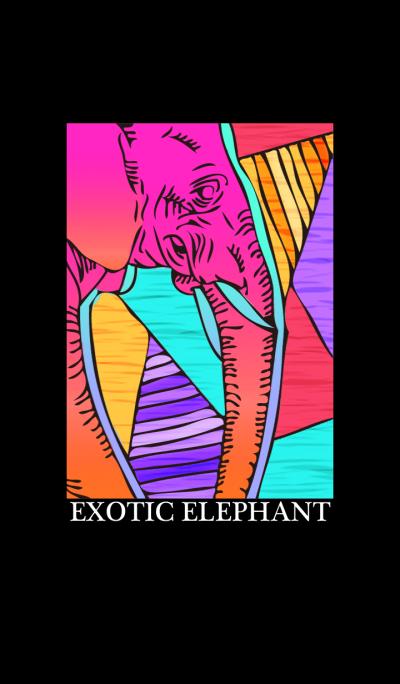 EXOTIC ELEPHANT