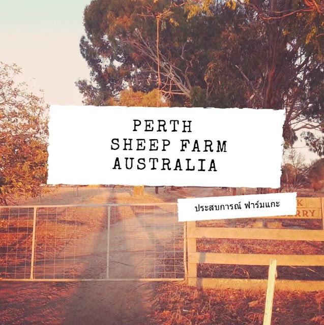 เพิร์ธ ออสเตรเลีย