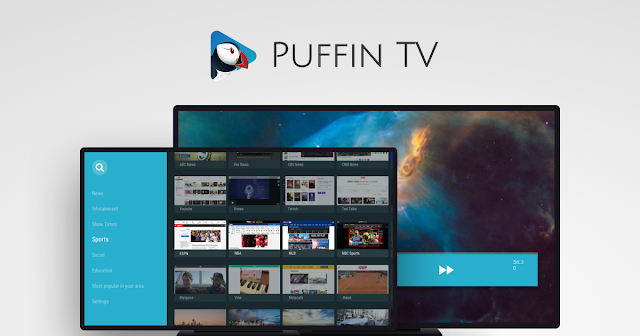 https://www.google.com/search?client=firefox-b-d&q=puffin+browser+android+tv