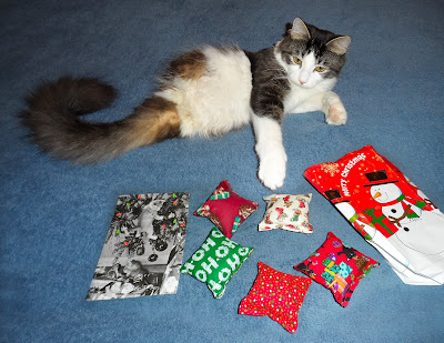 Anakin The Two Legged Cat & Christmas Presents