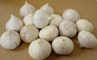 khasiat bawang putih,tunggal,jantan,lanang