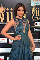 Shriya Saran in Beautiful Transparent Dark Gown IIFA Utsavam Awards 2017 047.JPG