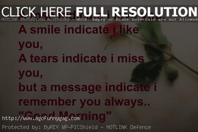 morning messages: a rose  red i care  love you, a smile indicate i like you,
