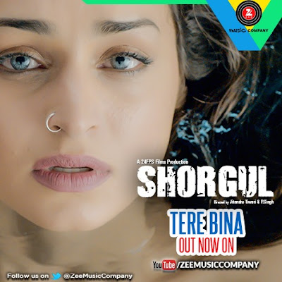Tere Bina - Shorgul (2016)