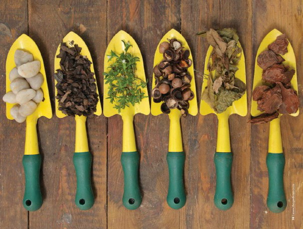 garden, garden tools, flower, seeds