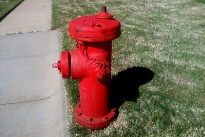 red top fire hydrant