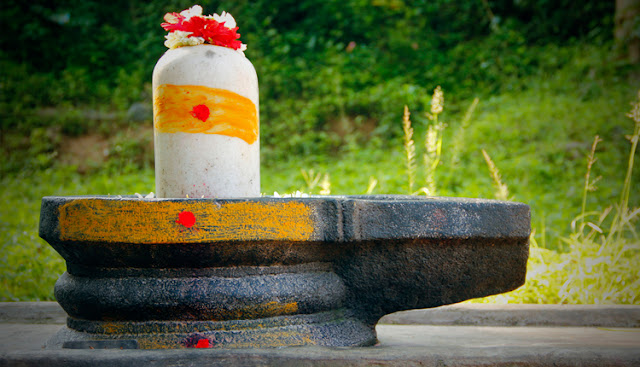 how to perform puja on shivratri