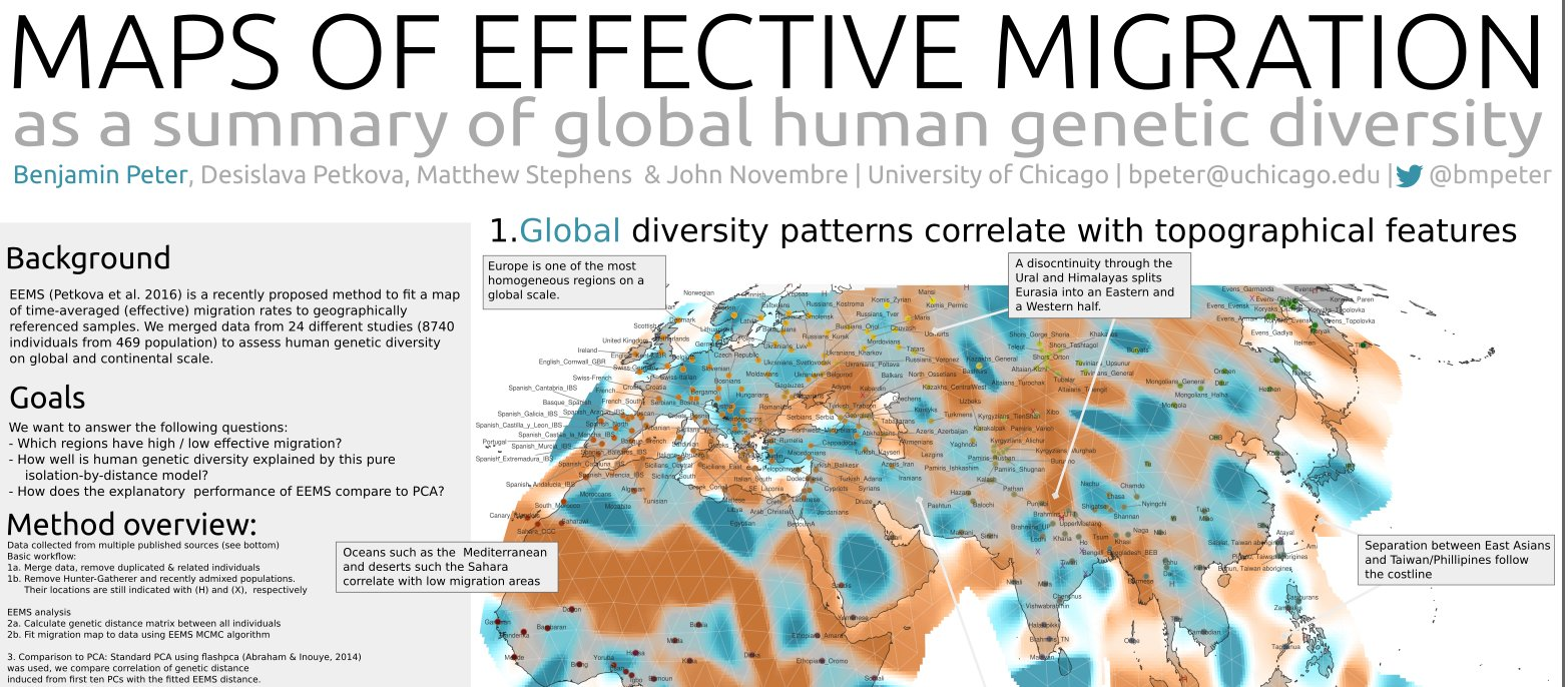 Eurogenes Blog: Europeans: genetically homogeneous on a