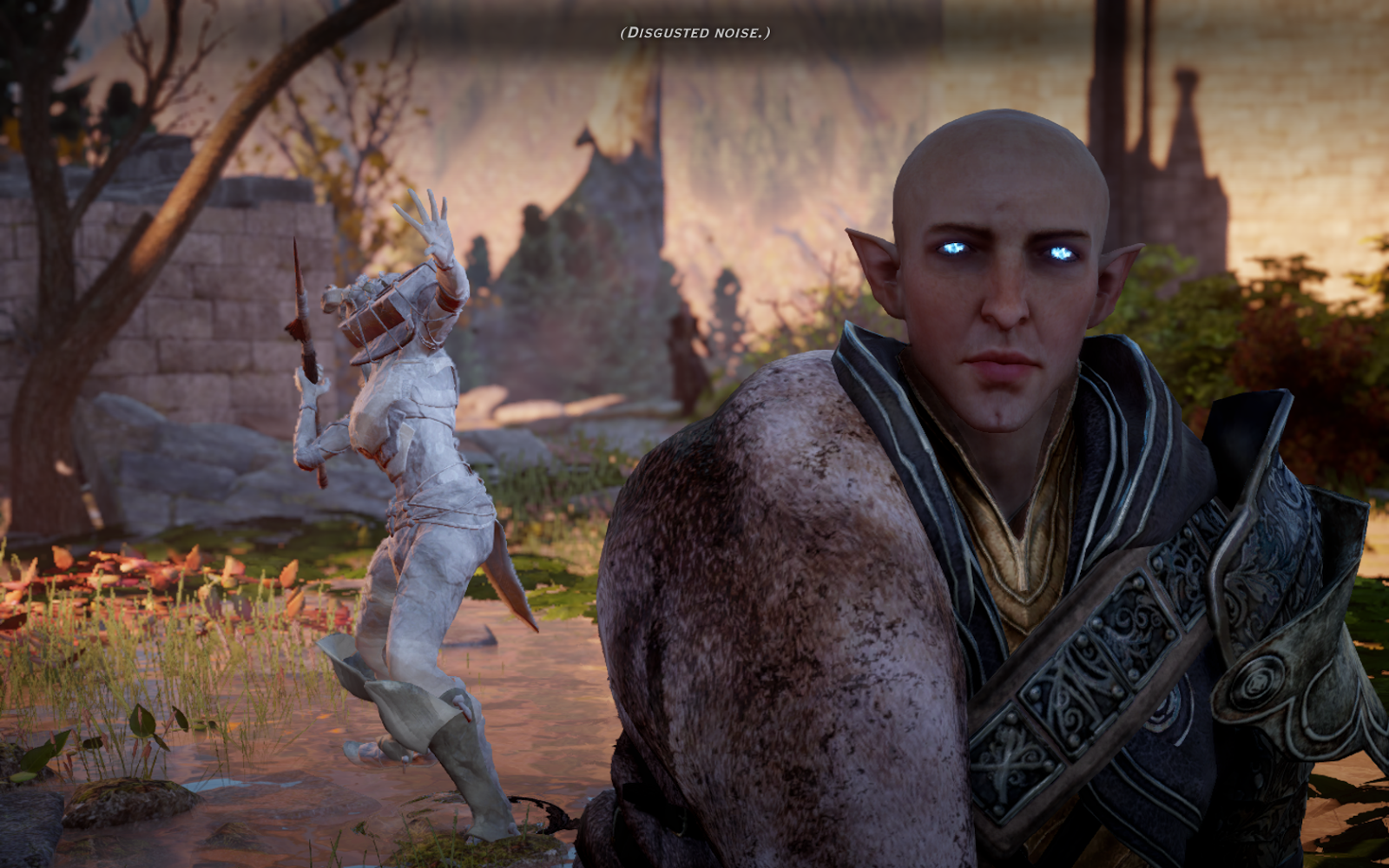 Dumped, Drunk and Dalish: The Real Hidden Question for