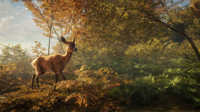 theHunter Call of the Wild PC Full Español