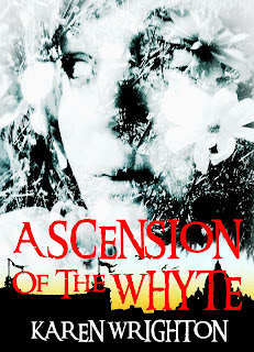 Special Limited Offer - Now 99p on Amazon