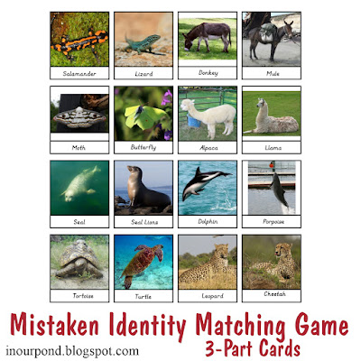 FREE Mistaken Identity Animal Printables from In Our Pond