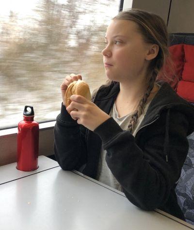 dubbhism ~: Greta Thunberg ~ Wounded healer