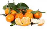 6 Alimentos super protetores da saúde