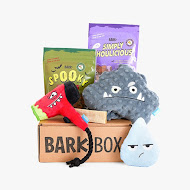 Monthly Bark Box Fun
