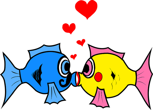 Love birds, animal love,type of love