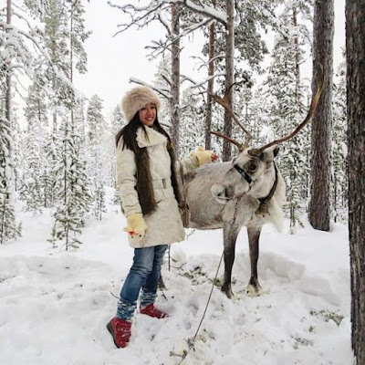 Reindeer Encounter in Husky Park, Murmansk