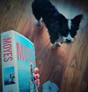 Srebrna zatoka - Jojo Moyes
