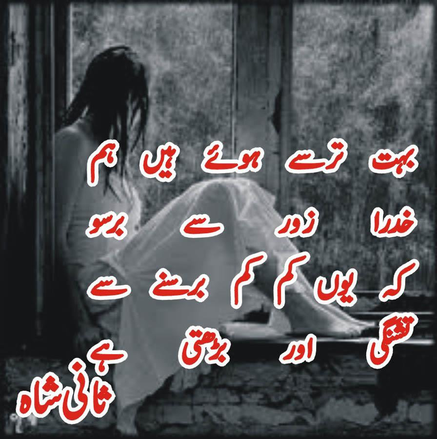 Category:Urdu-language television programs