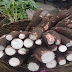 The Surprising Things Cassava Could Do To Our Body