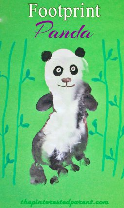 Panda Footprint Activity.