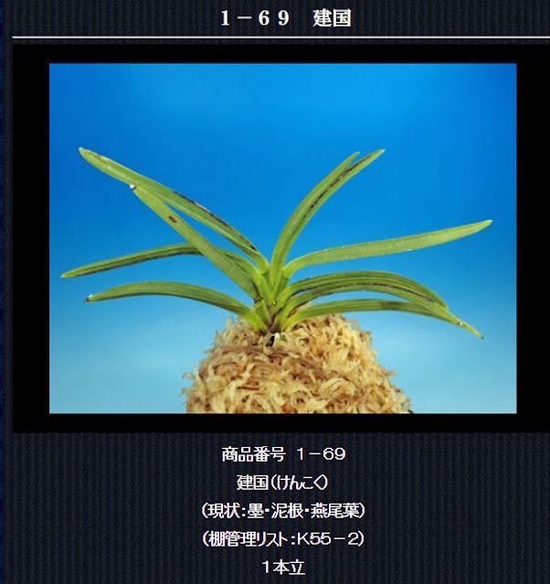 http://www.fuuran.jp/1-69.htm