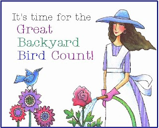 The Well-Rounded Mind: Great Backyard Bird Count!