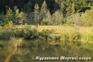 Журавлине (Мертве) озеро