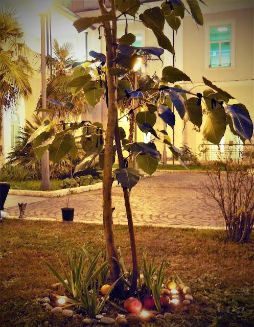 alberi sacri per yogini