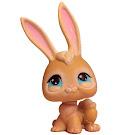 Littlest Pet Shop Tubes Rabbit (#295) Pet