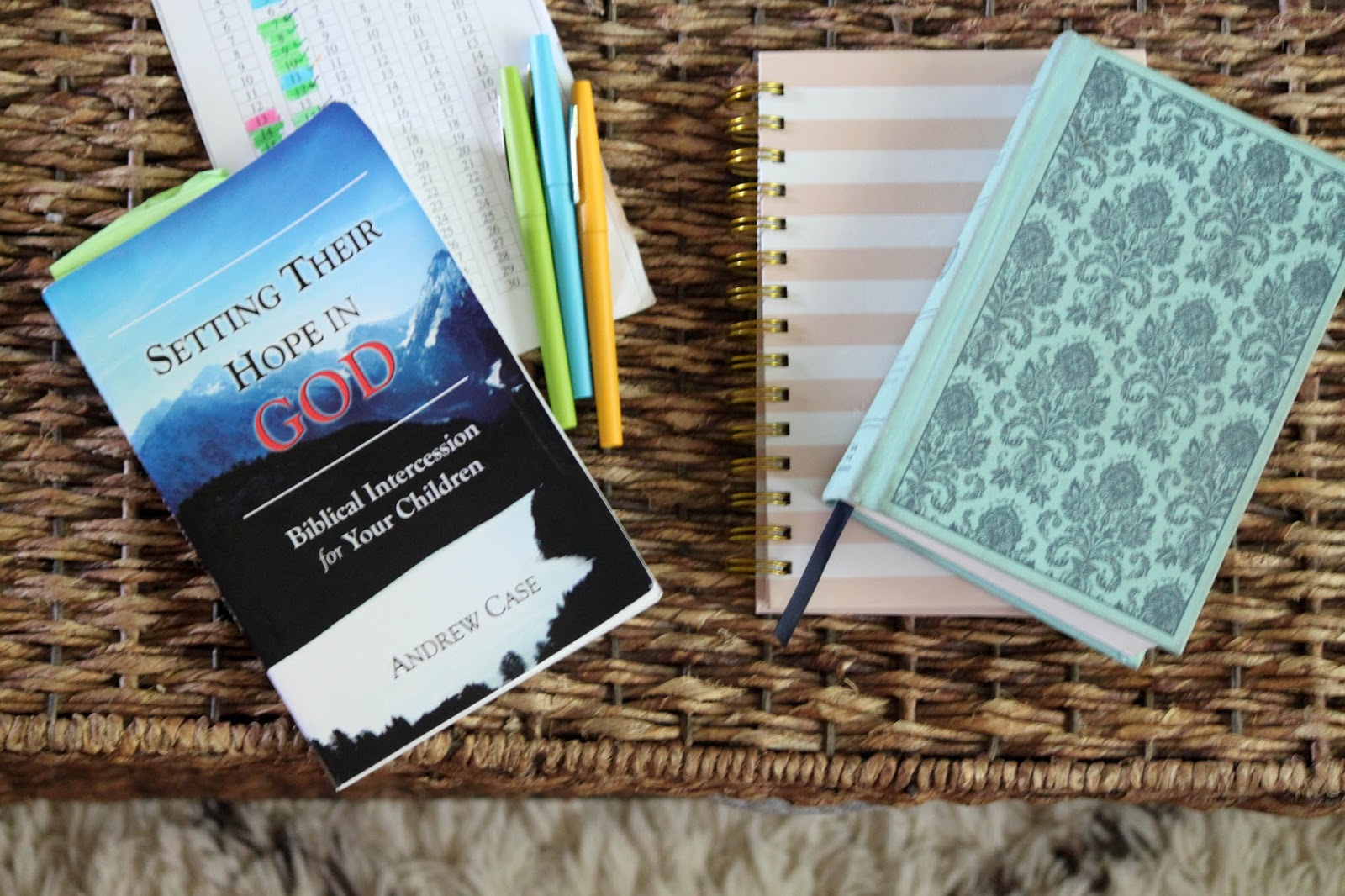 personal bible reading log Reading log for daily bible reading at church.