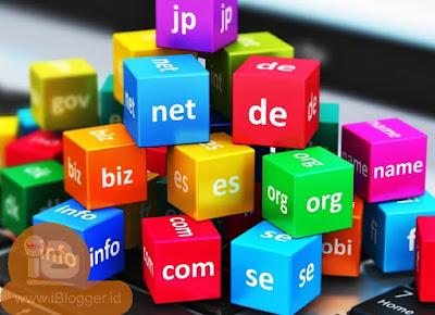 Pengertian Domain, Jenis Domain serta Kegunaanya