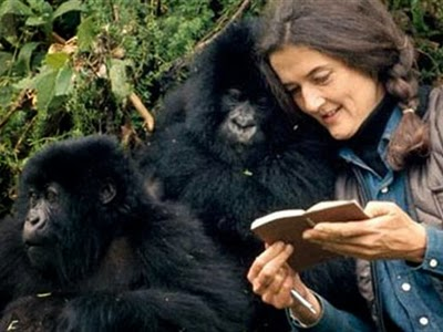 Dian Fossey Scientist And Activist Self Rescuing