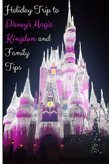 http://b-is4.blogspot.com/2015/01/holiday-trip-to-disneys-magic-kingdom.html