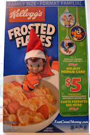 Elf on the shelf book cover