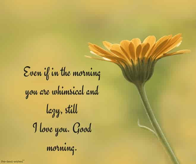 i love you good morning text with yellow flower