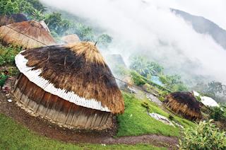 Desain Rumah Adat Papua Terpopuler 4