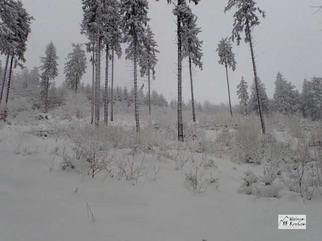 Góry zimą śnieg