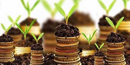 Fenomena Investasi Peer to Peer Lending di Indonesia