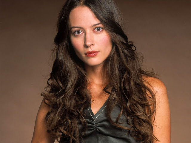 71 Amy Acker HD Wallpapers