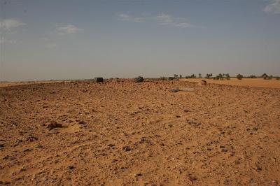 When vineyards bloomed in Sudan...