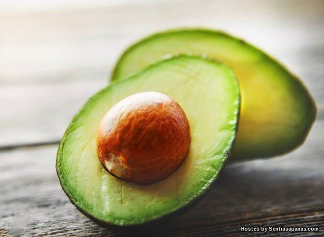 Khasiat Avokado (Buah Lemak) Untuk Kesihatan