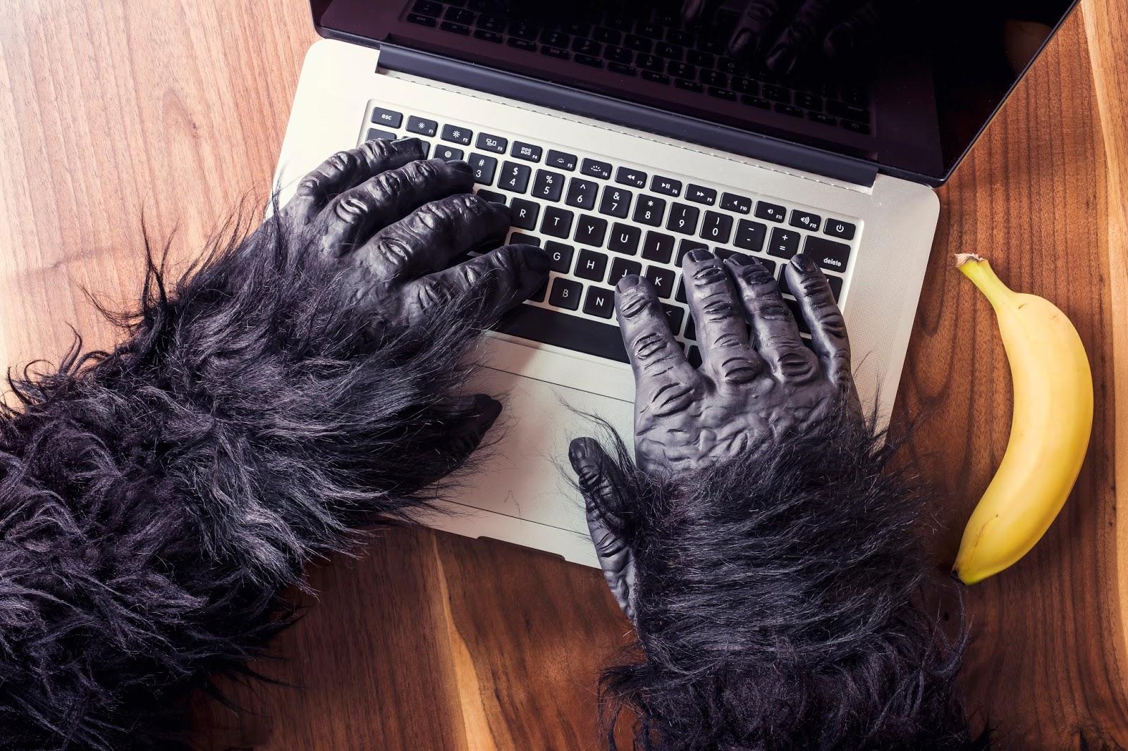 online társkereső, hogyan lehet választ kapni