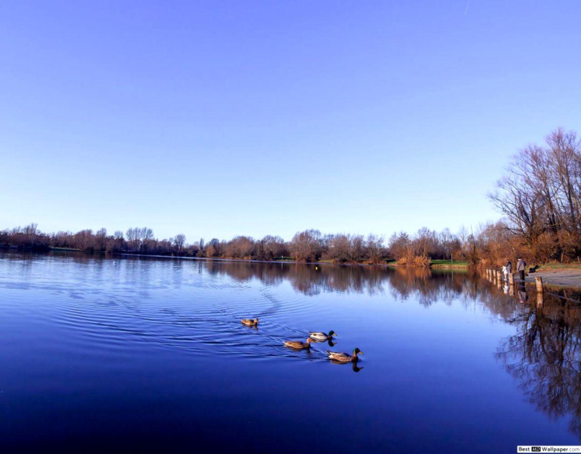 Beautiful Lake View Nexus 5 Wallpapers Wallpapers Magazine