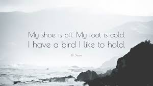 dr. seuss quote shoe