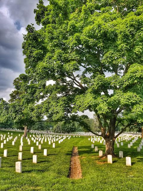 Arlington cemetery, washington dc, saurabh mittal